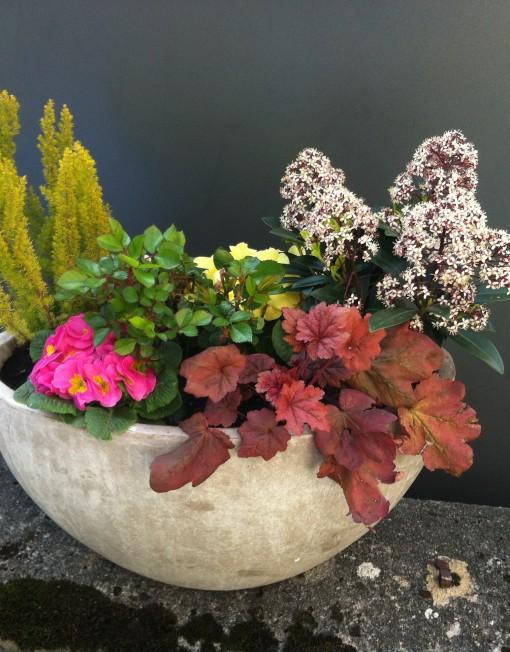 Arrangements_plantes_4 saisons