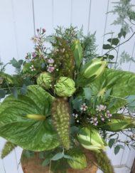 Bouquet spectaculaire vert avec anthurium vert et fleur de cire